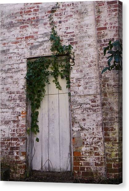 Abandoned Door Canvas Print by Warren Thompson