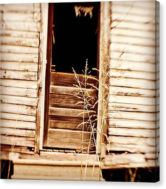 Weather Canvas Print - Abandoned Louisiana #igersoflouisiana by Scott Pellegrin