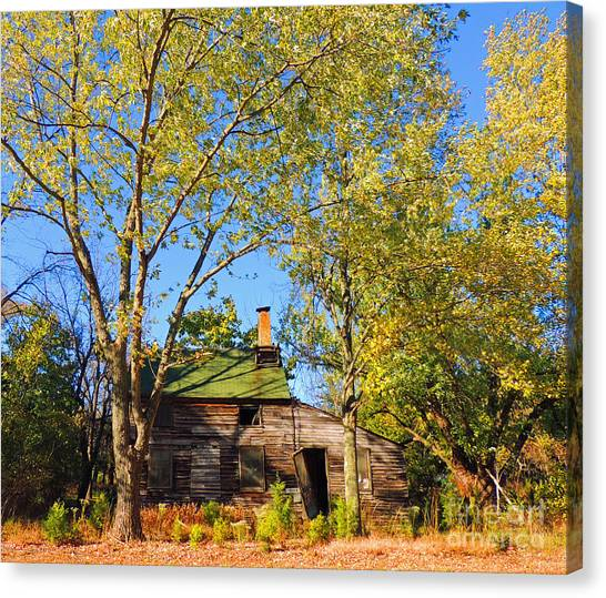 Abandoned Canvas Print by Marian DeSalvo-Rodgers