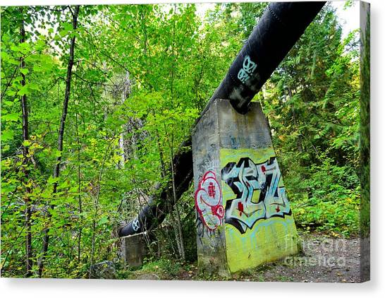 Abandoned Pipeline II Canvas Print by Phil Dionne