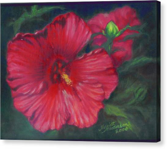 Abby Rose's Mallow Canvas Print