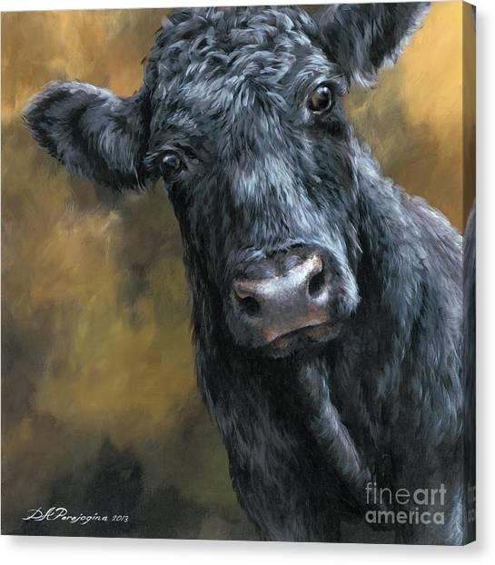 Pig Farms Canvas Print - Aberdeen Angus Calf by Dina Perejogina