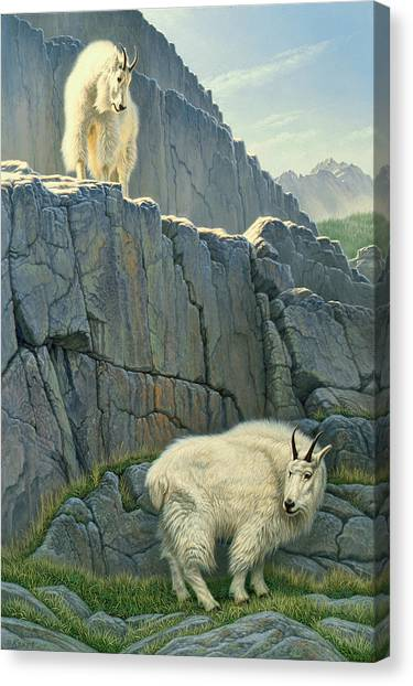 Goat Canvas Print - Above And Beyond by Paul Krapf