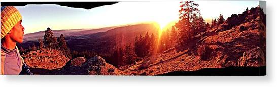 Canvas Print - Above It All by Tim Harris
