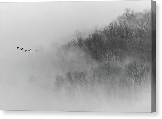 Early Canvas Print - Above Mist by ??????? / Austin