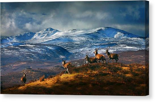 Above Strathglass Canvas Print