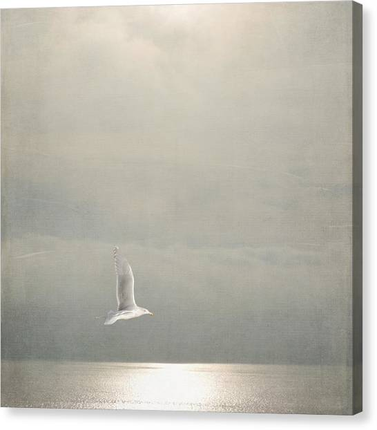Above The Sea Canvas Print