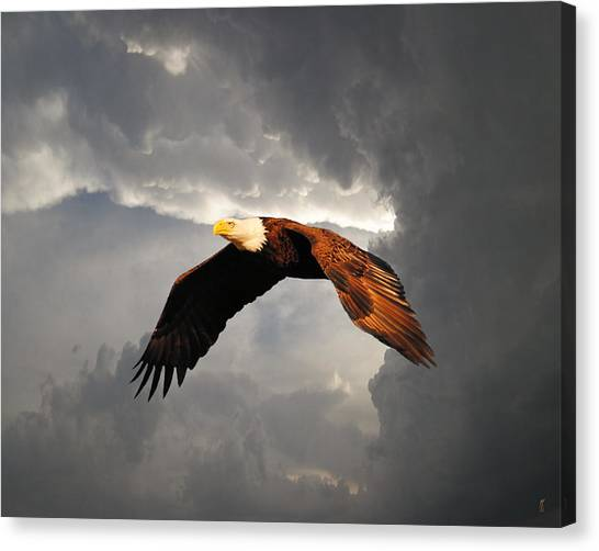 Above The Storm Canvas Print