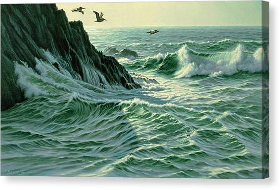 Pacific Coast Canvas Print - Above The Surf by Paul Krapf
