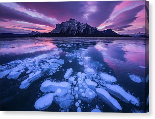 Winter Sky Canvas Print - Abraham Lake 3 by April Xie