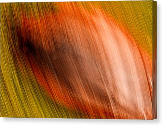Abstract #5 Canvas Print