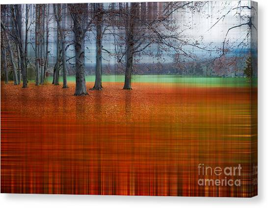 abstract atumn II Canvas Print