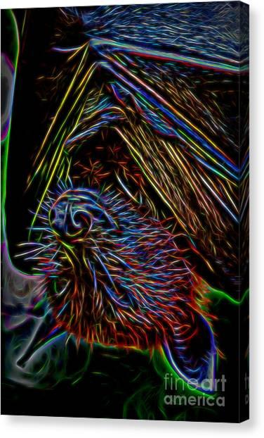 Abstract Bat Canvas Print