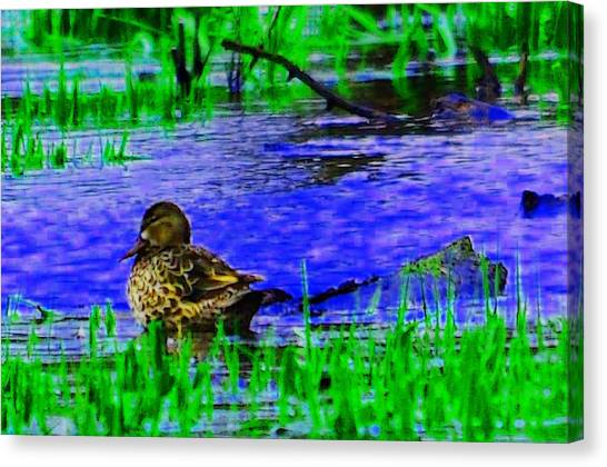 Abstract Duck Canvas Print by Valarie Davis
