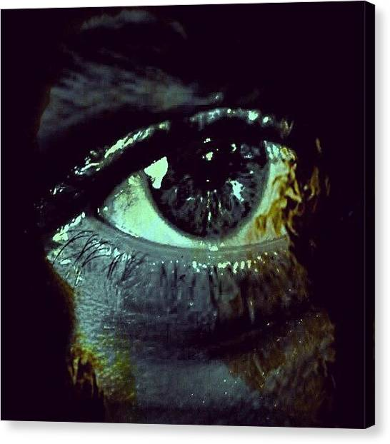 Irises Canvas Print - Abstract Eye!! by Chris Drake