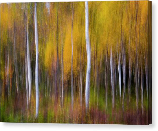 Impressionistic Canvas Print - Abstract Fall by Andreas Christensen