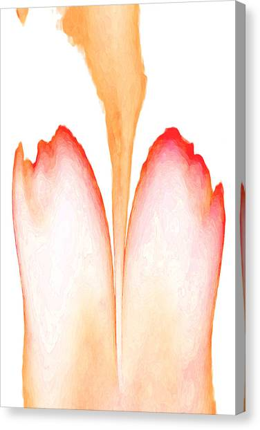 Abstract In Bloom 2 Canvas Print