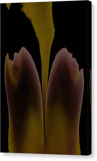 Abstract In Bloom Canvas Print