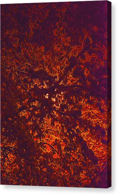 Abstract In Snow And Leaves Canvas Print by Michael Fox