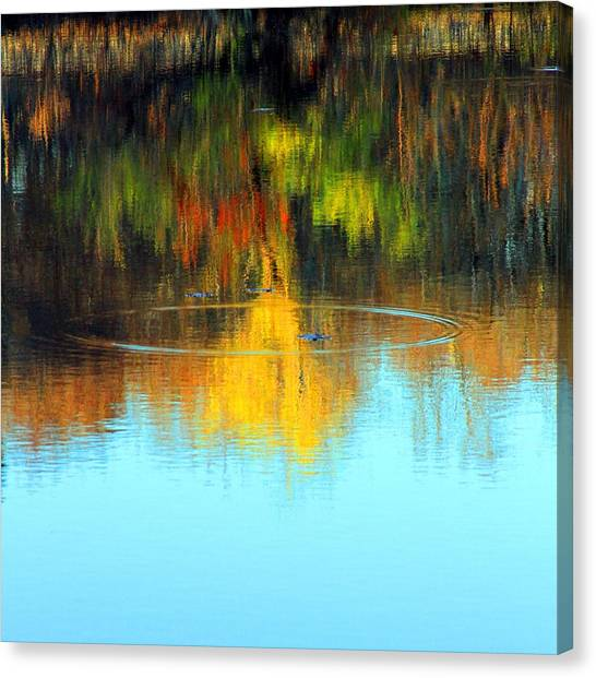 Abstract Nature Canvas Print by MPG Artworks