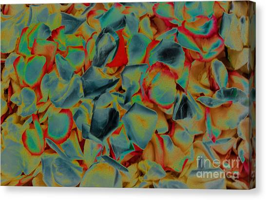 Canvas Print featuring the photograph Abstract Rose Petals by Mae Wertz