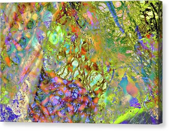 Merging Canvas Print - Abstract Polarised Light Micrographs by Steve Lowry