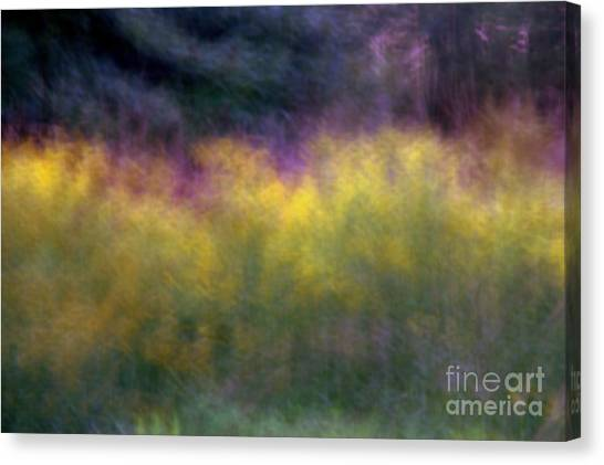 Abstract Viii Goldenrod Canvas Print
