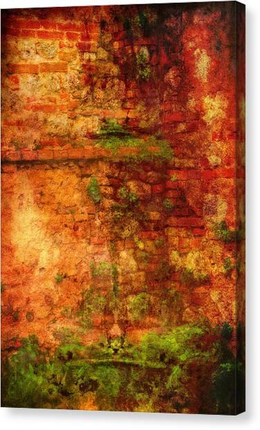 Abstract Vines On Wall - Radi Italy Canvas Print