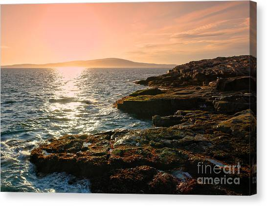 Sunset Horizon Canvas Print - Acadia National Park by Olivier Le Queinec