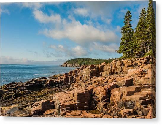 Acadia Shoreline Canvas Print