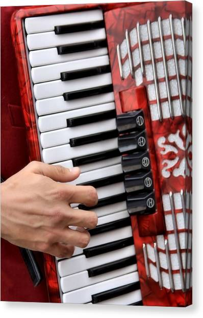 Accordian Canvas Print by James Stough