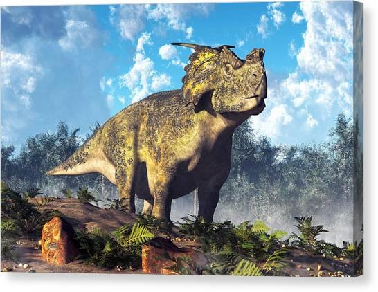 Triceratops Canvas Print - Achelousaurus by Daniel Eskridge