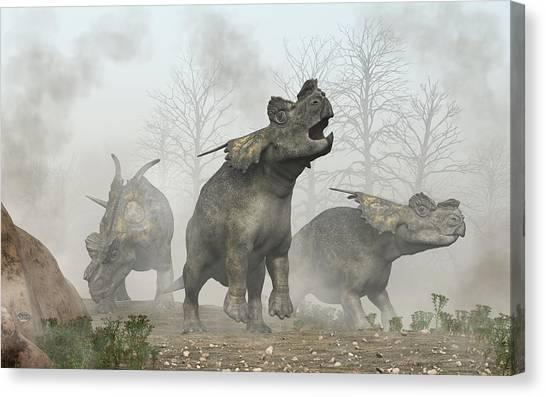Triceratops Canvas Print - Achelousauruses by Daniel Eskridge