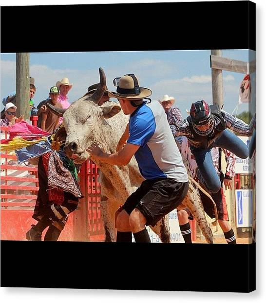 Rodeos Canvas Print - #action #actionshot #all_shots #bull by Lisa Yow