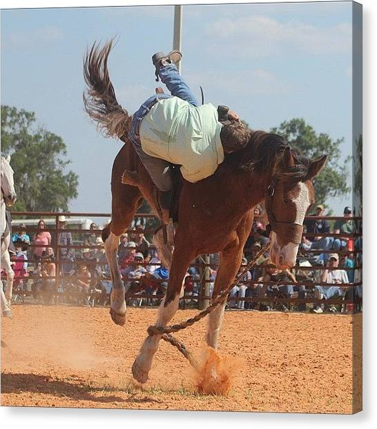 Rodeos Canvas Print - #action #actionshot #broncrider by Lisa Yow
