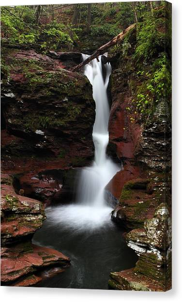 Adams Falls Canvas Print
