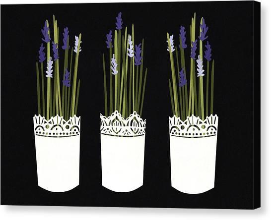 Blossom Canvas Print - Lavender Pots by Isobel Barber