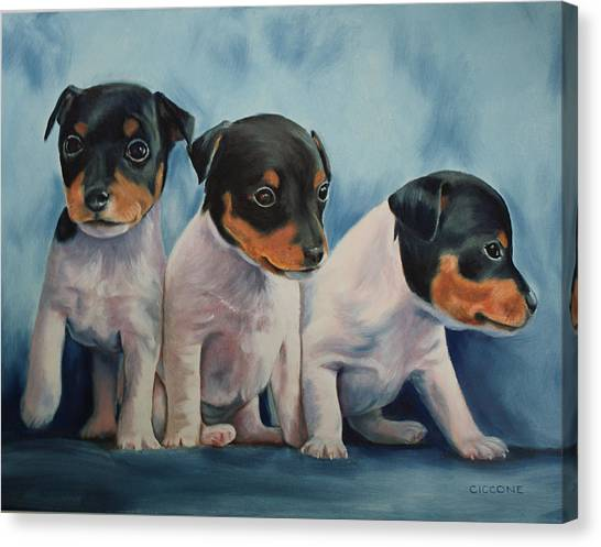 Adorable In Triplicate Canvas Print