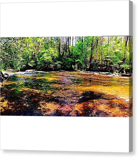 South Carolina Canvas Print - Adventure Is Out There by Peyton  Turbeville