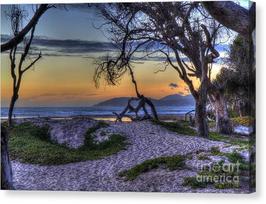 Adventures At Sunset Beach Canvas Print