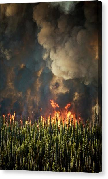 Boise National Forest Canvas Print - Aerial View Of Forest Fires by Mark Thiessen