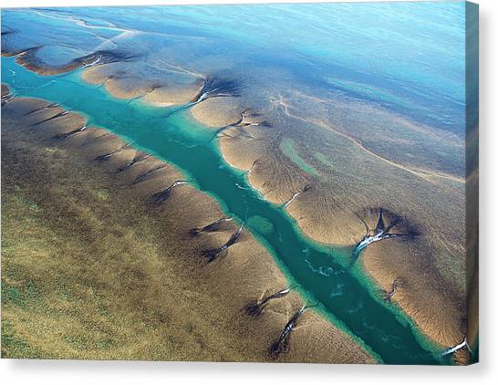 Aerial View Of Montgomery Reef Canvas Print by Laurenepbath