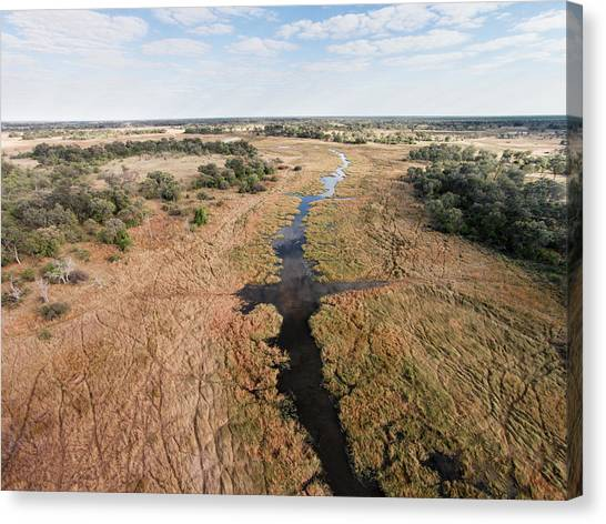 Okavango Swamp Canvas Print - Aerial View Of Okavango Delta, Moremi by WorldFoto