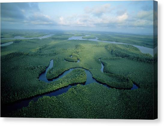 Congo River Canvas Print - Aerial View Of The Congo River Winding by Robert Caputo