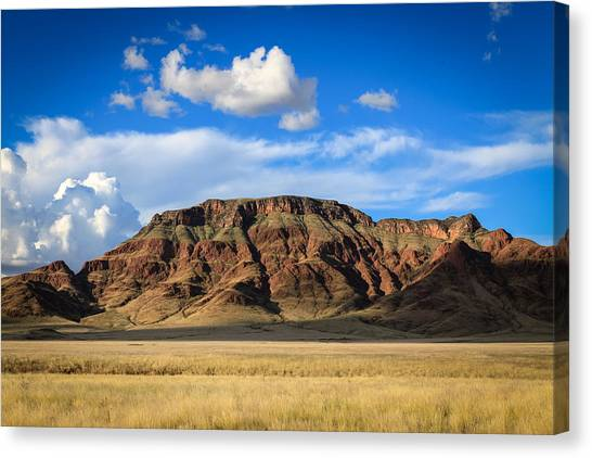 Aferican Grass And Mountain In Sossusvlei Canvas Print