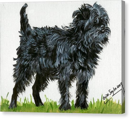 Affenpinscher Dog Canvas Print by Olde Time  Mercantile