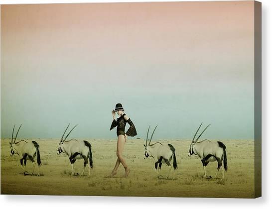 Africa Iv Canvas Print by Christine Von Diepenbroek