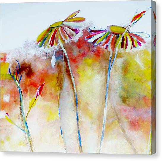 African Daisy Abstract Canvas Print