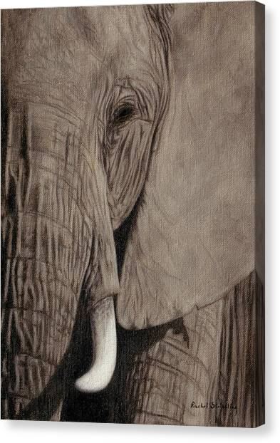 Large Mammals Canvas Print - African Elephant Painting by Rachel Stribbling