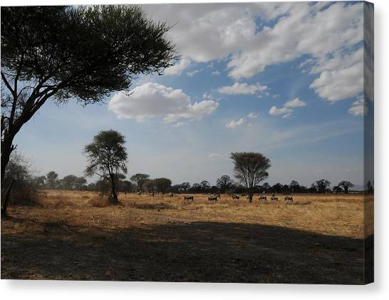 African Series Clouds Canvas Print by Katherine Green